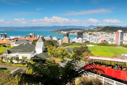 Wellington day trips: wine, coastal views and James Cameron's veggies