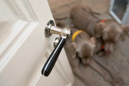 Important Contacts Every Responsible Homeowner Should Have