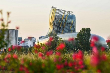 Top 10 wine bars in Bordeaux – chosen by experts