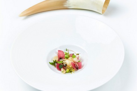For the first time, Michelin has awarded One Star to a restaurant in Reykjavik and the Faroe Islands