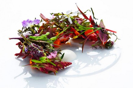Michelin Nordic Guide 2016: Maaemo in Oslo and Geranium in Copenhagen join an exclusive club of only 116 restaurants worldwide