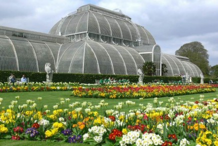 Budget cuts threaten Kew Gardens' world-class status