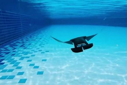 Bio bots: robots that mimic animal physiology