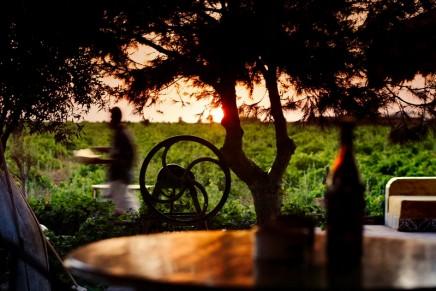Fine light wines from fortified wine regions