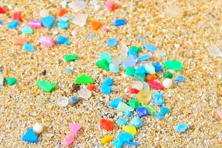 Microplastics should be banned in cosmetics to save oceans, MPs say