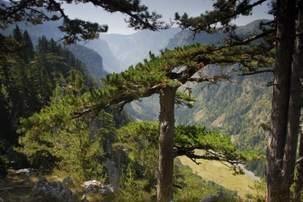 Top 10 national parks in Europe: readers' travel tips
