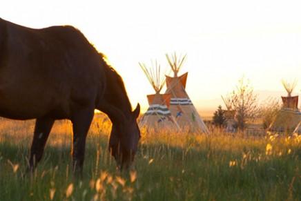 Wild horses and eco-luxury in Nevada