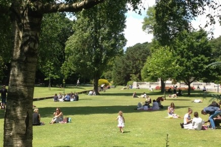 Parks look for new ways to meet costs – with trees, bees and subscription fees