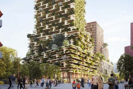 Utrecht rooftops to be 'greened' with plants and mosses in new plan