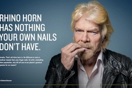 Richard Branson fronts nail-biting campaign against rhino poaching