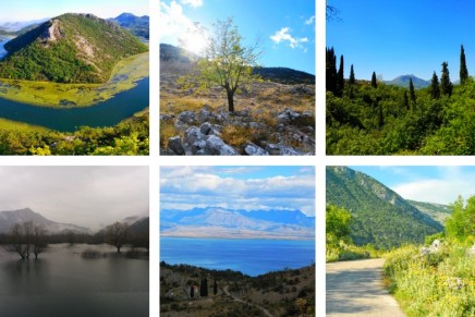 Montenegro's pristine Lake Skadar threatened by new resort