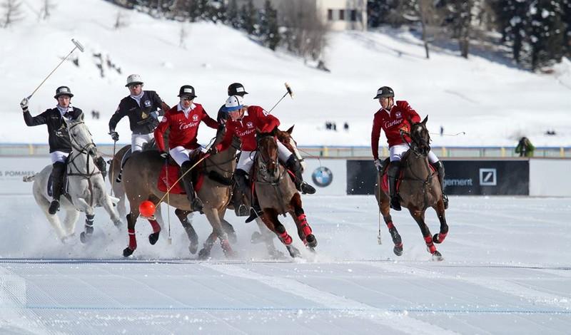 snow polo tournament st moritz-