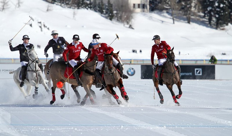 snow polo tournament st moritz-