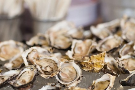 UK's first sustainable European oysters go on sale