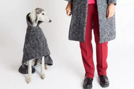 The Top Designer Brands That Offer Matching Outfits For You And Your Dog