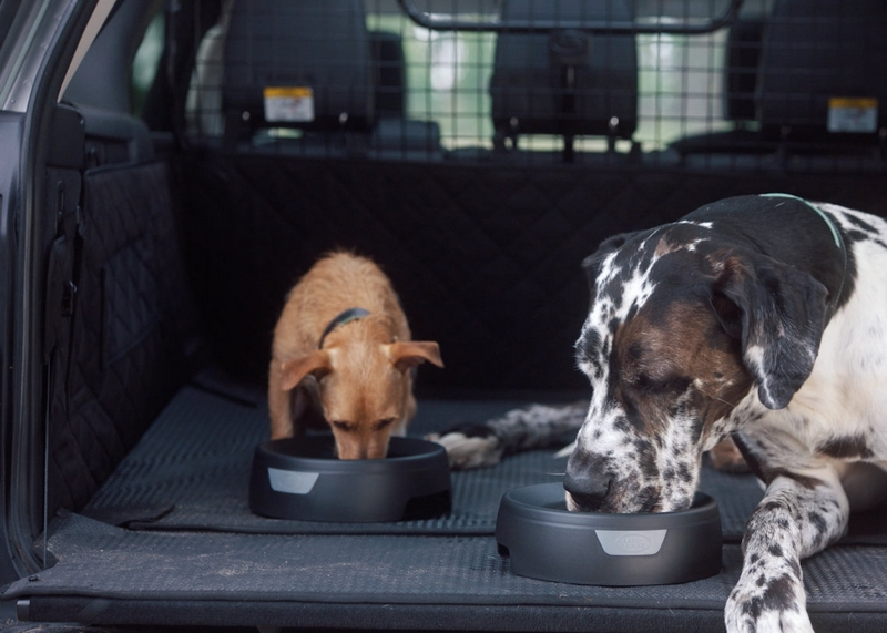 the-foldable-pet-carrier-land rover