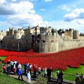 tower of london - Designer Tom Piper's art installation Blood Swept Lands and Seas of Red at the Tower of London