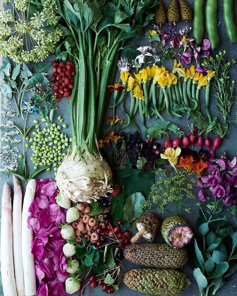 vegetable season at noma