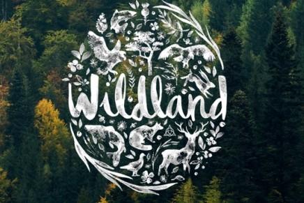 Danish billionaires plan to rewild large swath of Scottish Highlands