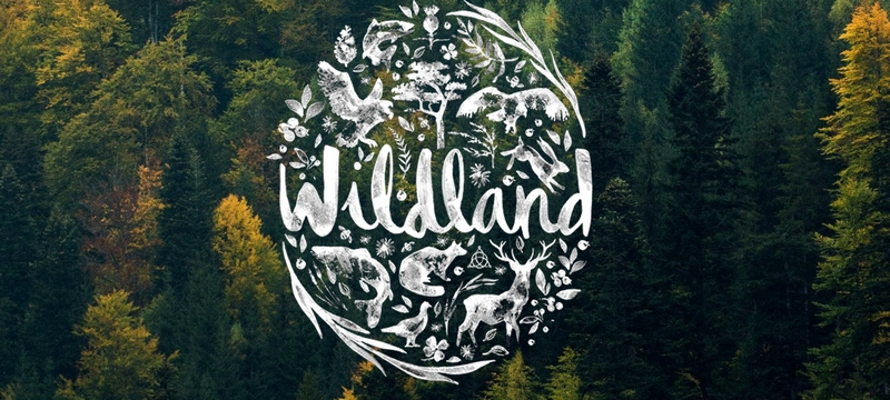 wildlandcompany